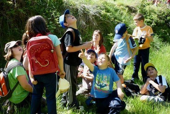 Actividades Escolares en Teruel. Gargallo