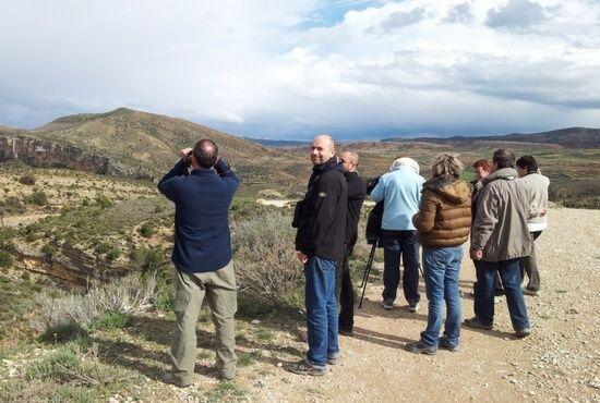 Paseos ornitologicos en Teruel