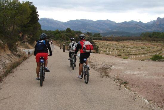 Alquiler bicis Cretas