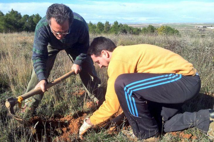 Reforestando los montes de Teruel